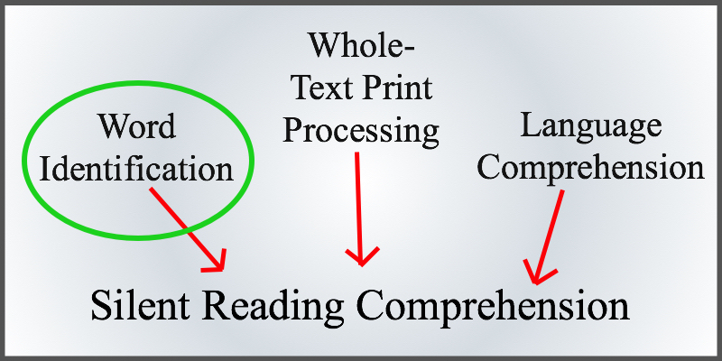 Word identification contributes to silent reading comprehension