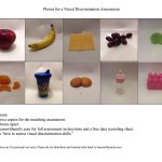 photo of a free matching photo to photo visual discrimination assessment activity