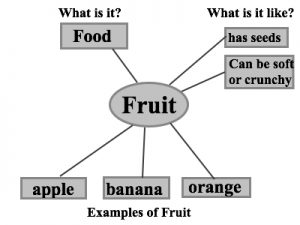 A word web for fruit. Examples are apple banana and orange. It is a food. It has seeds and can be soft or crunchy