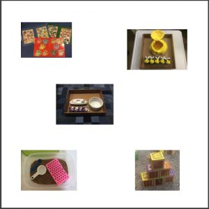 A choice board with 5 photos of different play activities